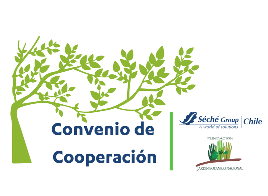 Seche Group Chile