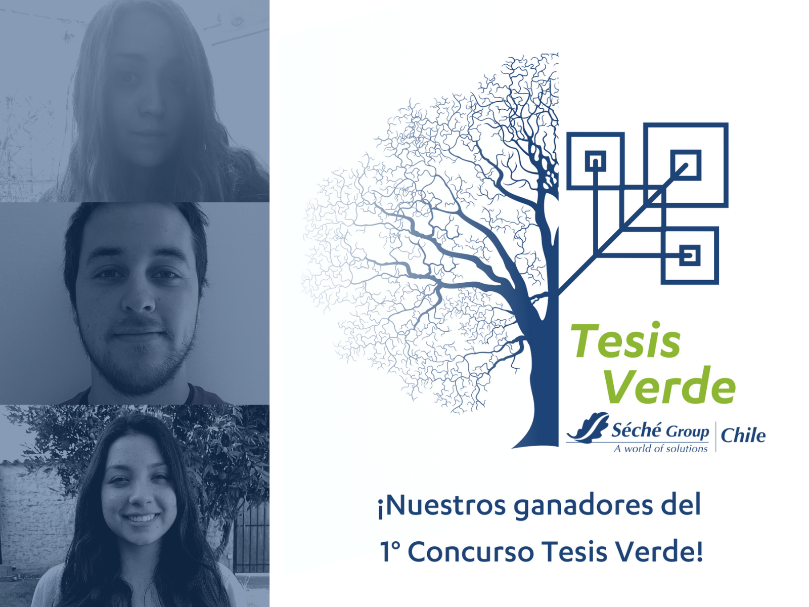 Tesis Verde - Seche Group Chile