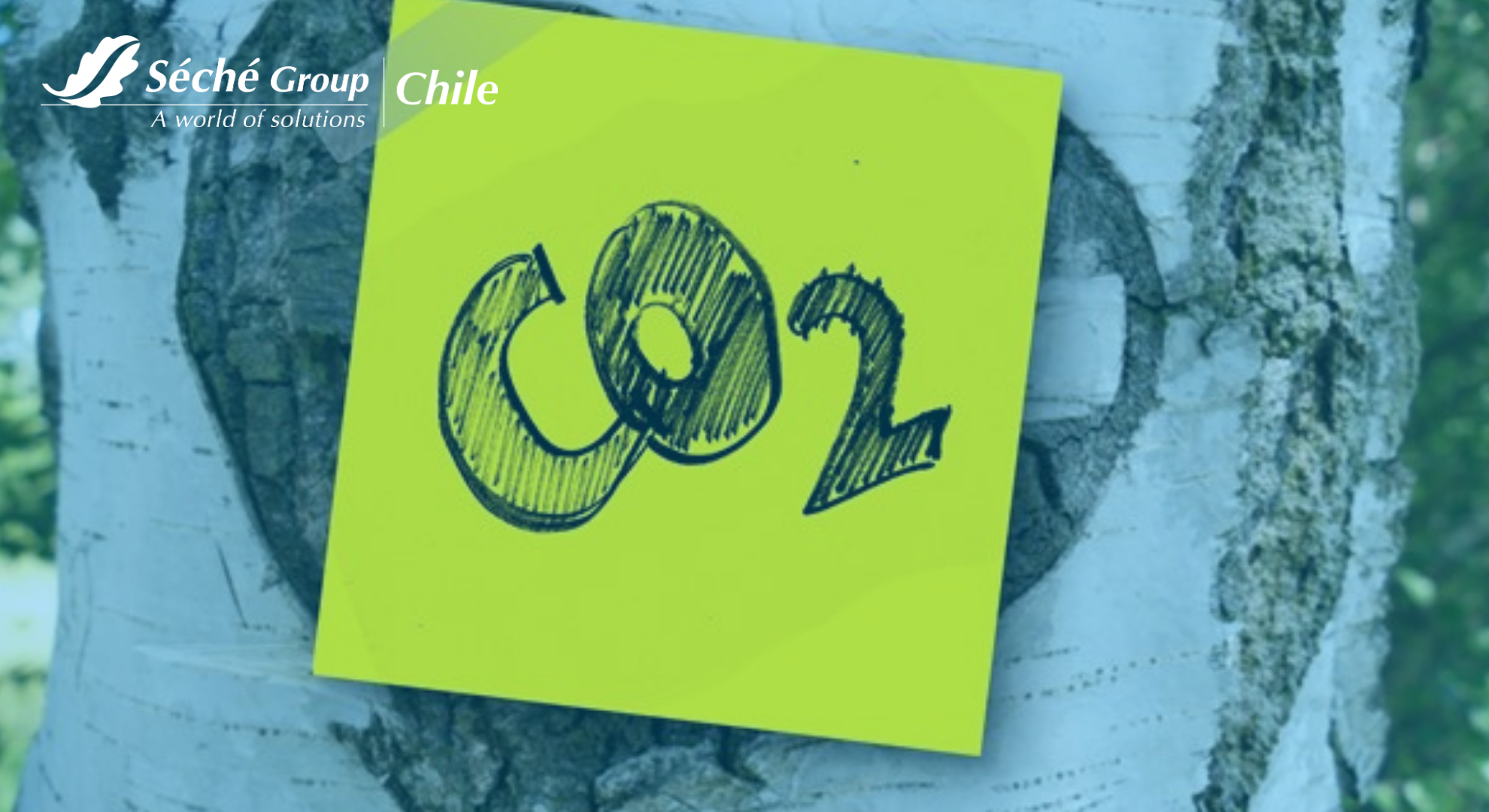 Reducción Emisiones CO