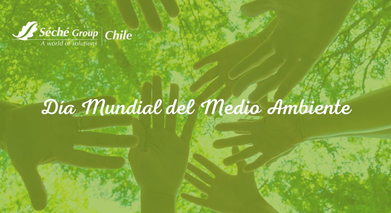 Dia mundial del medio ambiente Seche Group Chile